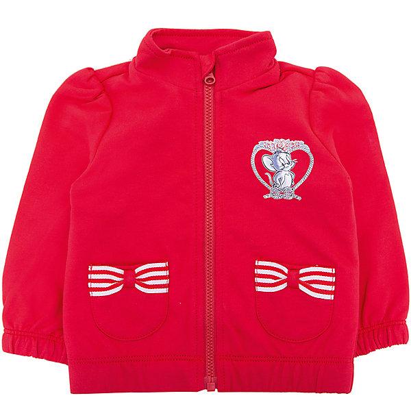 Куртка Original Marines для девочкиТолстовки<br>Характеристики товара:<br><br>• цвет: малиновый<br>• состав: 100% хлопок<br>• застежка: молния<br>• с длинными рукавами<br>• воротник-стойка<br>• качество и комфорт<br>• страна бренда: Италия<br><br>Яркая толстовка из натурального хлопка для девочки поможет разнообразить гардероб ребенка и обеспечить тепло в прохладную погоду. Она отлично сочетается с другими предметами детского гардероба и позволяет подобрать к вещи низ различных расцветок. Дополнена капюшоном и качественной молнией. Веселый детский принт спереди и бантики на карманах порадует вашу малышку.<br><br>Итальянский бренд Original Marines - это стильный продуманный дизайн и неизменно высокое качество исполнения. <br><br>Толстовку Original Marines (Ориджинал Маринс) для девочки можно купить в нашем интернет-магазине.<br>Ширина мм: 356; Глубина мм: 10; Высота мм: 245; Вес г: 519; Цвет: розовый; Возраст от месяцев: 0; Возраст до месяцев: 3; Пол: Женский; Возраст: Детский; Размер: 56/62,62/68,86,80,68/74; SKU: 8384542;