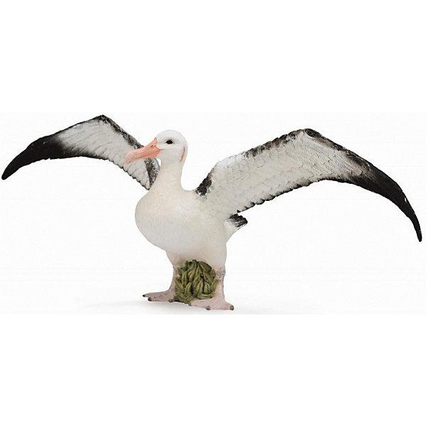 Collecta Коллекционная фигурка Collecta Странствующий альбатрос, L игровые фигурки gulliver collecta динозавр трицератопс 1 40