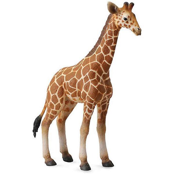 Collecta Коллекционная фигурка Collecta Жеребенок Сетчатого Жирафа, L