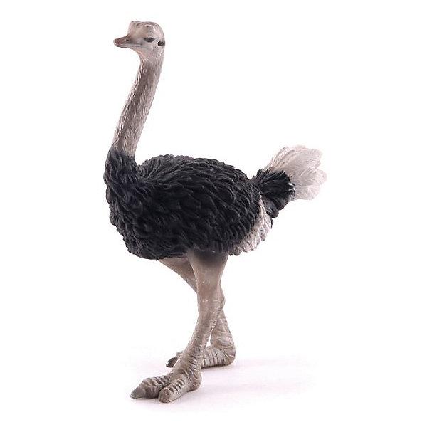 Collecta Коллекционная фигурка Collecta Страус, L игровые фигурки gulliver collecta динозавр трицератопс 1 40