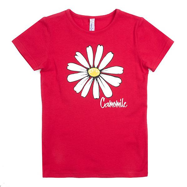 Футболка PlayToday для девочкиФутболки, поло и топы<br>Характеристики товара:<br><br>• цвет: красный;<br>• состав ткани: 95% хлопок, 5% эластан;<br>• сезон: лето;<br>• с рисунком;<br>• короткие рукава; <br>• страна бренда: Германия.<br><br>Красная футболка для детей оригинально оформлена принтом, на горловине - мягкая трикотажная резинка. Хлопковая детская футболка - отличный вариант верха для создания модного летнего наряда. Такая футболка для ребенка выполнена из легкого хлопкового трикотажа, позволяющего коже дышать. Детская одежда от бренда PlayToday - это стильные и доступные вещи. <br><br>Футболку PlayToday (ПлэйТудэй) для девочки можно купить в нашем интернет-магазине.<br>Ширина мм: 199; Глубина мм: 10; Высота мм: 161; Вес г: 151; Цвет: красный; Возраст от месяцев: 36; Возраст до месяцев: 48; Пол: Женский; Возраст: Детский; Размер: 104,146/152,134/140,110,122,116,128; SKU: 8435678;