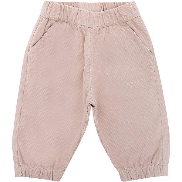 Брюки Original Marines для мальчикаБрюки<br>Характеристики товара:<br><br>• цвет: синий;<br>• состав ткани: 100% хлопок;<br>• сезон: демисезон;<br>• талия: резинка;<br>• страна бренда: Италия.<br><br>Вельветовые брюки для ребенка от Original Marines - это сочетание европейского стиля и высокого качества. Эти брюки для ребенка сделаны из натурального дышащего хлопка. Брюки для детей легко надеваются благодаря мягкой резинке в талии, они дополнены удобными карманами. Детские брюки комфортно сидят, так как снабжены резинками на брючинах. <br><br>Брюки Original Marines (Ориджинал Маринс) для девочки можно купить в нашем интернет-магазине.
