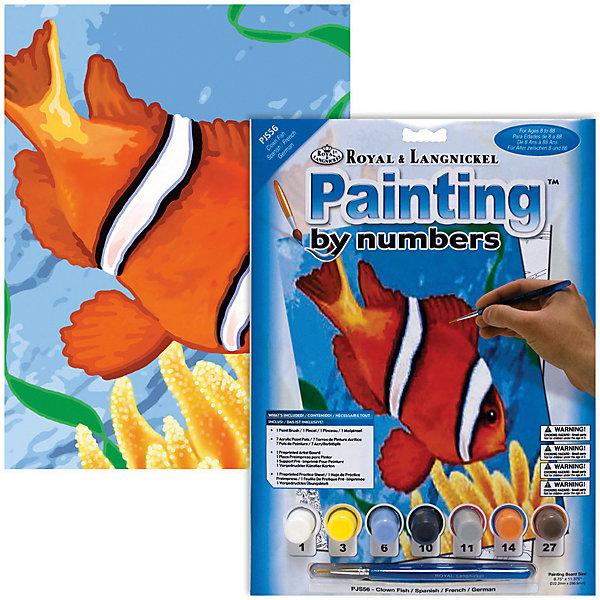 PJS 56 Раскраска красками Рыба Клоун , Royal&Langnickel, Швейцария, Унисекс  - купить со скидкой