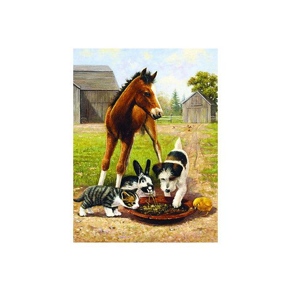 Купить Картина по номерам Royal&Langnickel Время обеда , 22х29 см, Китай, Унисекс