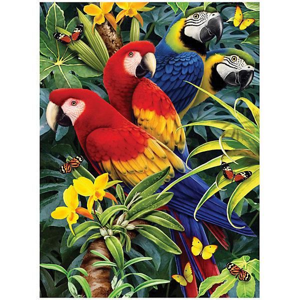 Картина по номерам Royal&Langnickel Прекрасные попугаи , 22х29 см, Китай, Унисекс  - купить со скидкой