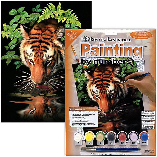 Купить PJS 57 Раскраска красками Тигр , Royal&Langnickel, Швейцария, Унисекс