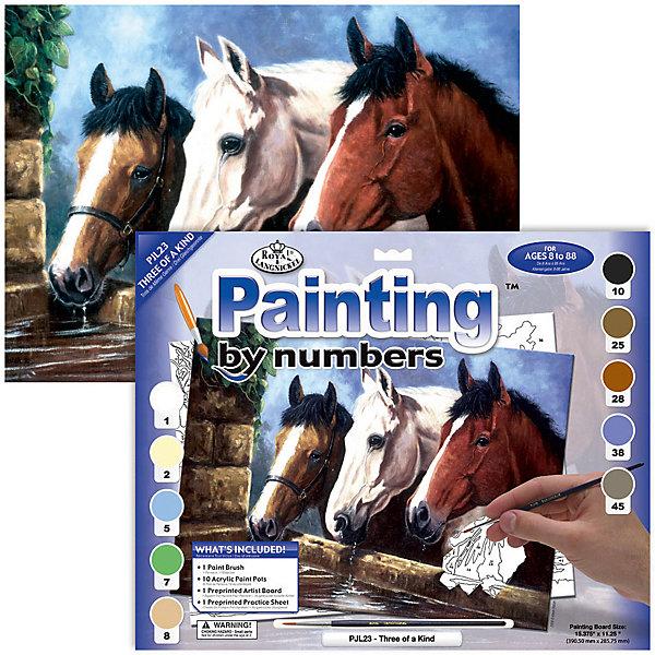 Купить PJL 23 Раскраска красками Три лошади , Royal&Langnickel, Швейцария, Унисекс