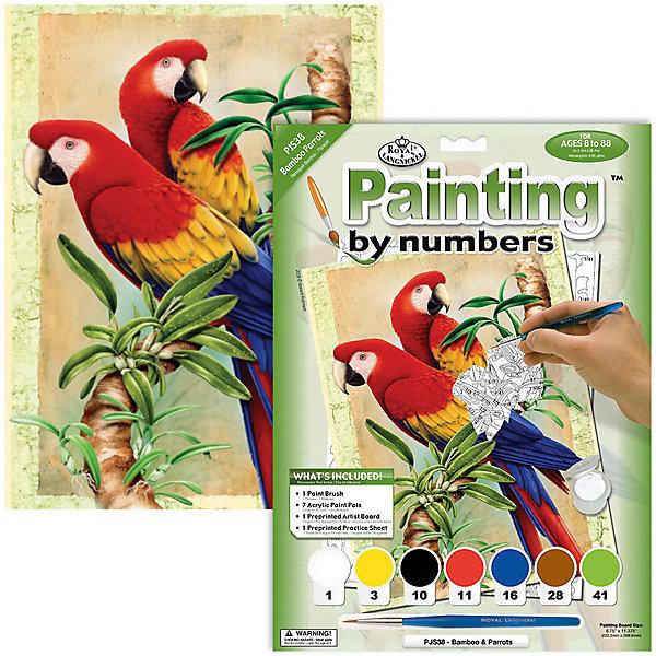 Royal&Langnickel Картина по номерам Бамбуковые попугаи, 22х29 см