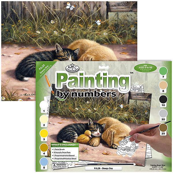 Купить Картина по номерам Royal&Langnickel Сонный день , 28, 5х35 см, Китай, Унисекс
