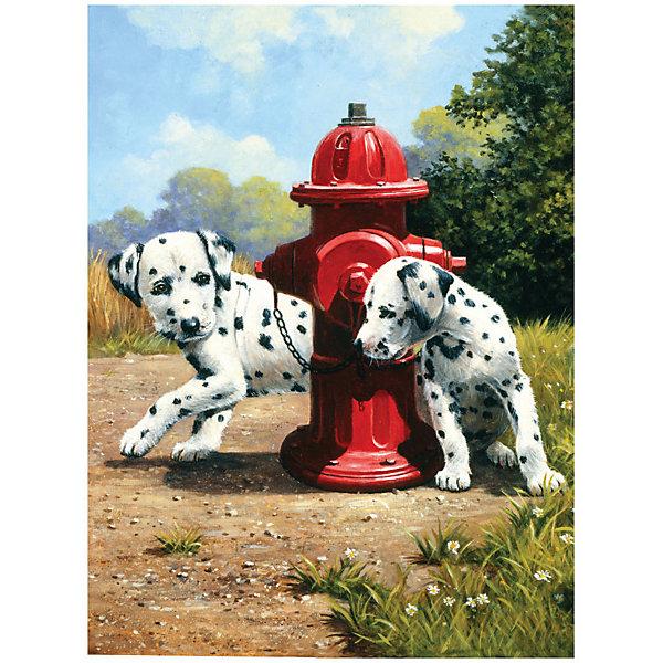 Купить PJS 80 Раскраска красками Далматины , Royal&Langnickel, Швейцария, Унисекс
