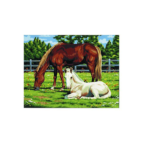 "Royal&Langnickel Картина по номерам на холсте Royal&Langnickel ""Лошади"", 28х35 см"