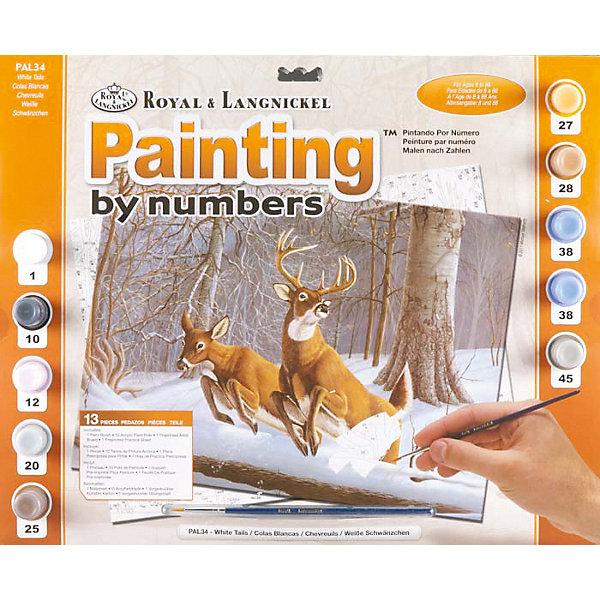Купить Картина по номерам Royal&Langnickel Белохвостые олени , 28, 5х35 см, Швейцария, Унисекс