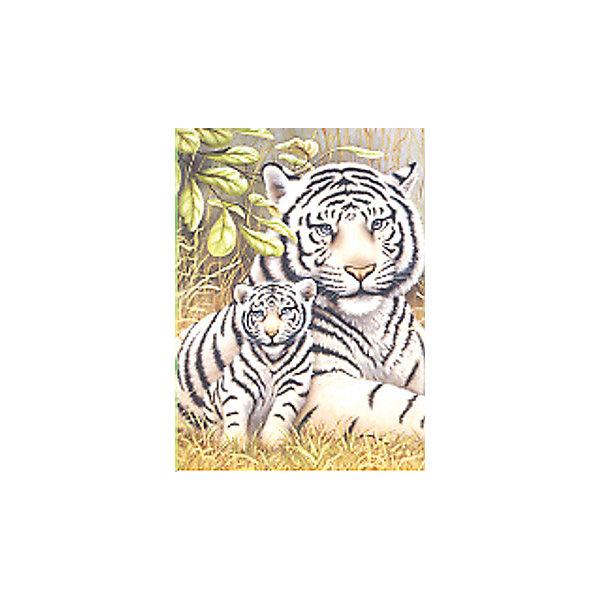 Royal&Langnickel Картина по номерам Royal&Langnickel Белые тигры, 22х29 см tukzar роспись по номерам тигры 40 50 см