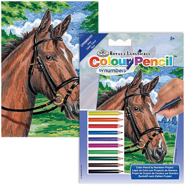 Мини-картина по номерам карандашами Royal&amp;Langnickel Лошади, 14х20 смКартины по номерам<br>Характеристики:<br><br>• возраст: от 8 лет;<br>• материал: бумага;<br>• комплектация: основа, 10 карандашей, контрольный лист;<br>• размер раскраски: 14х20 см;<br>• вес: 120 гр;<br>• размер: 14x1х20 см;<br>• бренд: Royal&amp;Langnickel.<br><br>CPNMIN-101 Раскраска карандашами «Лошади» мини подходит для детей от 8 лет. В набор входит основа с нанесенной на ней схемой рисунка размер 14*20 см, цветные карандаши 10 цветов, контрольный лист. Рисунок разделен на небольшие участки, каждый из которых следует раскрашивать карандашом, соответствующего цвета. <br><br>Все карандаши имеют номер. Для удобства, в набор входит калька, дублирующая рисунок раскраски. На ней каждый участок рисунка пронумерован. С помощью накладывания кальки на рисунок, можно определить карандашом какого цвета следует раскрашивать тот или иной фрагмент рисунка. <br><br>CPNMIN-101 Раскраску карандашами «Лошади» мини можно купить в нашем интернет-магазине.<br>Ширина мм: 140; Глубина мм: 10; Высота мм: 200; Вес г: 120; Возраст от месяцев: 96; Возраст до месяцев: 2147483647; Пол: Унисекс; Возраст: Детский; SKU: 8506881;