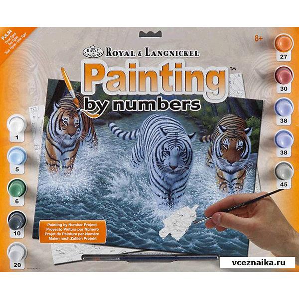Картина по номерам Royal&amp;Langnickel Три тигра, 28,5х35 смКартины по номерам<br>Характеристики:<br><br>• возраст: от 8 лет;<br>• материал: бумага;<br>• комплектация: основа, 10 красок, кисточка;<br>• размер раскраски: 28,5х39 см;<br>• вес: 260 гр;<br>• размер: 32,4x2х40 см;<br>• бренд: Royal&amp;Langnickel.<br><br>PJL 34 Раскраска красками «Три тигра» предназначена для детей от 8 лет. В набор входит: основа  с нанесенной на ней схемой рисунка, размер 28,5 * 39 см, 10 красок, кисточка. Раскраска по номерам обязательно понравится начинающим художникам. Рисовать с таким набором очень просто. <br><br>Рисунок разделен на участки. Все они пронумерованы. Краски тоже имеют номера. Раскрашивая участок картины, выбирайте краску с соответствующим ему номером.  Если на участке стоит два или три номера, значит, потребуется смешать две или три краски. Аккуратно нанесите краску на все пронумерованные участки картины. <br><br>Краска полностью высохнет в течении 15-20 мин. Рисование красками развивает у ребенка аккуратность, усидчивость, способствует формированию художественного вкуса. Рисование является прекрасной подготовкой к письму, развивает моторику пальцев, укрепляет кисть руки.<br><br>PJL 34 Раскраску красками «Три тигра» можно купить в нашем интернет-магазине.<br>Ширина мм: 324; Глубина мм: 20; Высота мм: 400; Вес г: 260; Возраст от месяцев: 96; Возраст до месяцев: 2147483647; Пол: Унисекс; Возраст: Детский; SKU: 8506943;