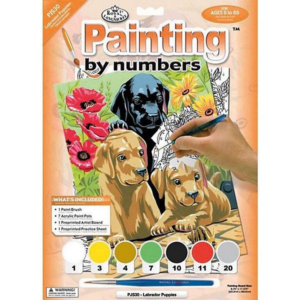Royal&Langnickel Картина по номерам Royal&Langnickel Щенки лабрадора, 22х29 см пазл clementoni hq щенки лабрадора 1500 31976