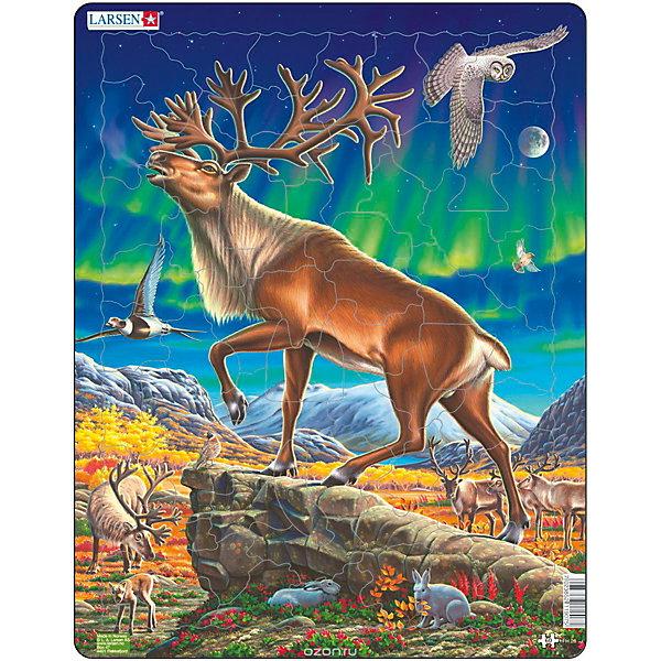 Купить Пазл Larsen Северный олень , 60 элементов, Норвегия, разноцветный, Унисекс