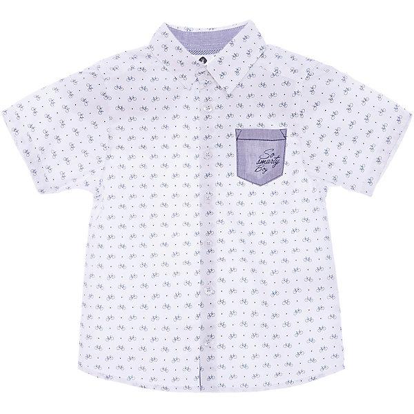 Фото - Z Рубашка Z Generation для мальчика [супермаркет] jingdong геб scybe фил приблизительно круглая чашка установлена в вертикальном положении стеклянной чашки 290мла 6 z