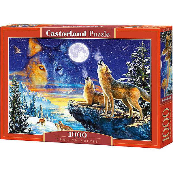 цена на Castorland Пазл Castorland Волки, 1000 деталей