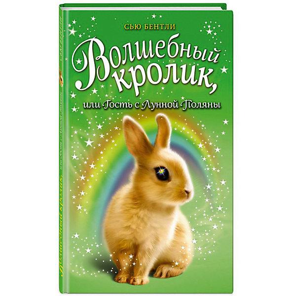 """Картинка для Повесть """"Приключения волшебных зверят"""" Волшебный кролик, или Гость с Лунной Поляны"""