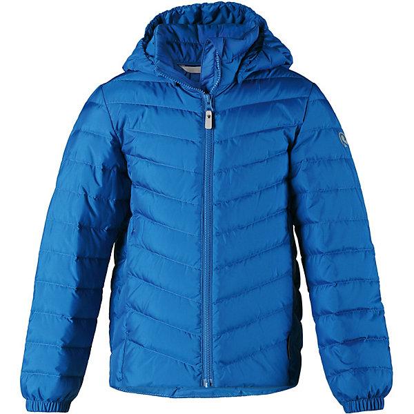 Купить Куртка Falk Reima для мальчика, Китай, синий, 134, 164, 104, 122, 116, 110, 140, 158, 146, 128, 152, Мужской
