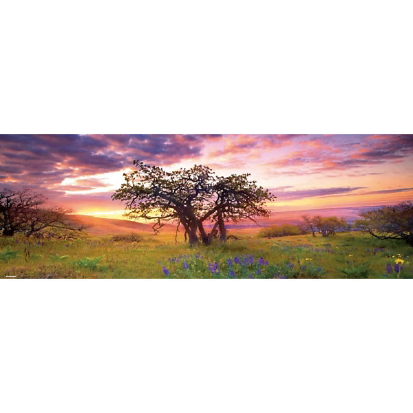 Купить Пазлы HEYE Дуб , 2000 деталей, панорама, Чехия, Унисекс