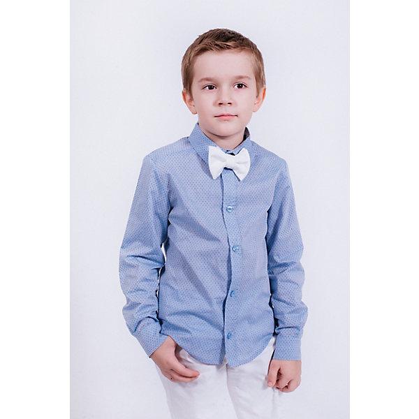 Купить Рубашка Choupette для мальчика, Россия, голубой, 98, 104, 140, 122, 110, 116, 128, 134, Мужской