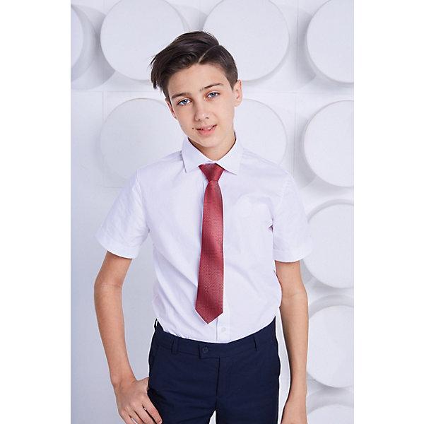 Галстук ChoupetteАксессуары<br>Характеристики товара:<br><br>• состав ткани: 100% полиэстер;<br>• сезон: круглый год;<br>• особенности модели: школьная, нарядная;<br>• с регулятором;<br>• страна бренда: Россия.<br><br>Этот детский галстук отличается классической формой и эффектной расцветкой. Стильный галстук для детей от бренда Choupette сделан из качественного материала, который отлично держит форму. Галстук для ребенка - универсальный способ добавить наряду элегантности или торжественности. Товары для детей от известного бренда Choupette - это модные вещи, которые добавят в гардероб ребенка оригинальную французскую нотку.