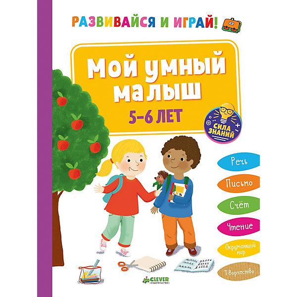 Купить СЗ. Развивайся и играй! Мой умный малыш. 5-6 лет/Арройо Б., Clever, Латвия, Унисекс