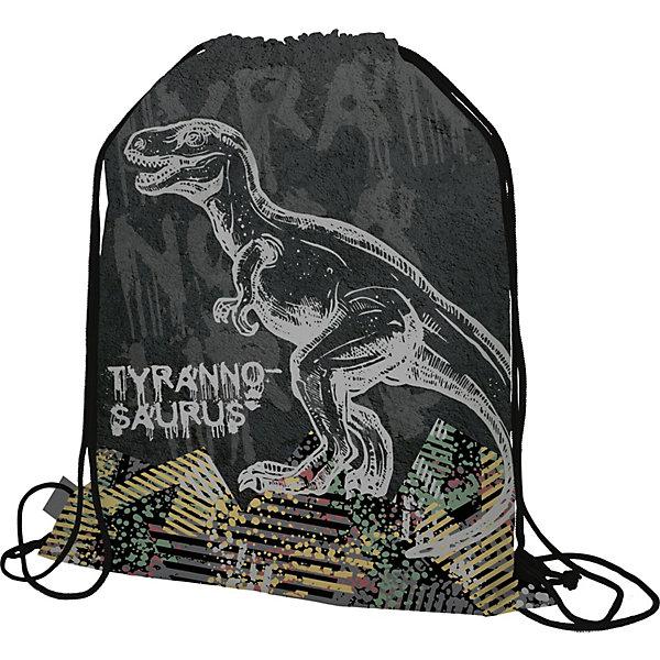 Купить Мешок для обуви Seventeen Тиранозавр увеличенного размера, Китай, серый, Унисекс