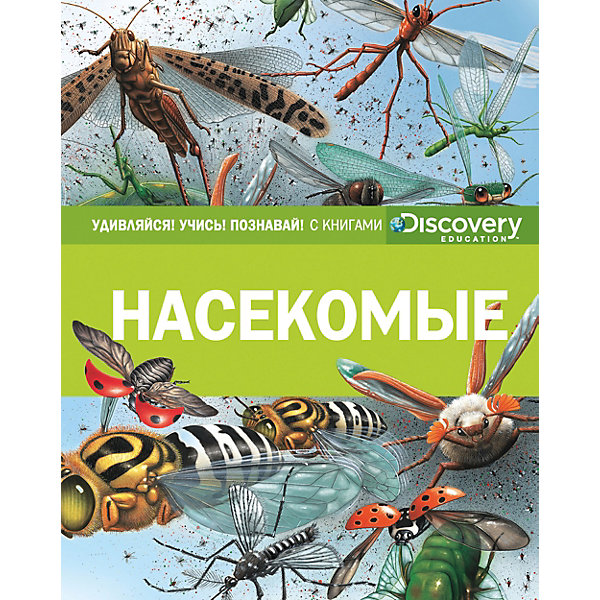 Махаон Энциклопедия Discovery Education Насекомые 探索科学百科 discovery education(中阶)2级a3·泰坦尼克与冰山