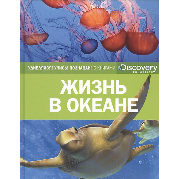 Махаон Энциклопедия Discovery Education Жизнь в океане 探索科学百科 discovery education(中阶)2级a3·泰坦尼克与冰山