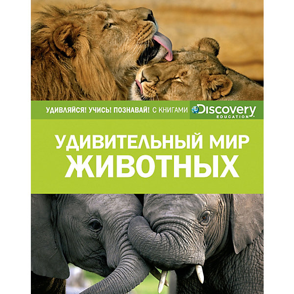 Махаон Энциклопедия Discovery Education Удивительный мир животных махаон энциклопедия пазл читай играй учись россия