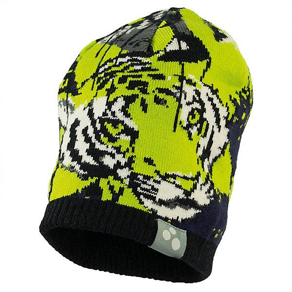 Купить Шапка TIGER HUPPA для мальчика, Эстония, светло-зеленый, 57, 51-53, 47-49, 55-57, Мужской