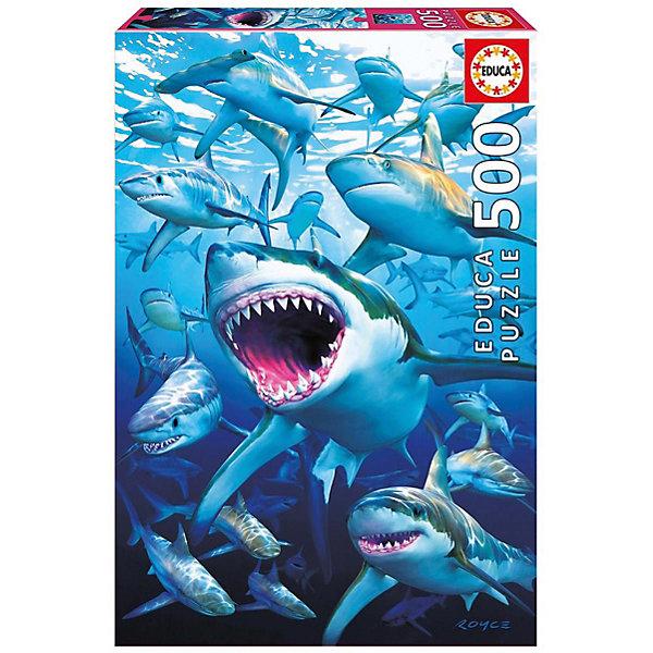 Educa Пазл Educa Стая акул 500 элементов пазл educa 500 эл 48 34см животные на краю скалы