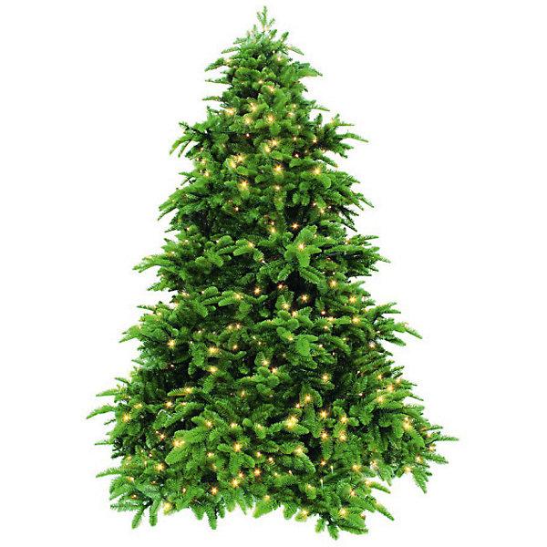 Triumph Tree Ель стройная Нормандия с 232 лампами, 155 см