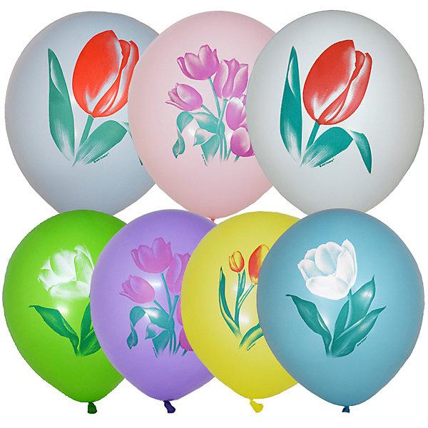 Latex Occidental Воздушные шары Тюльпаны 25 шт, пастель + декоратор