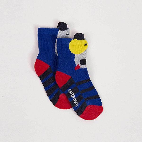 Носки Catimini для мальчика, Синий