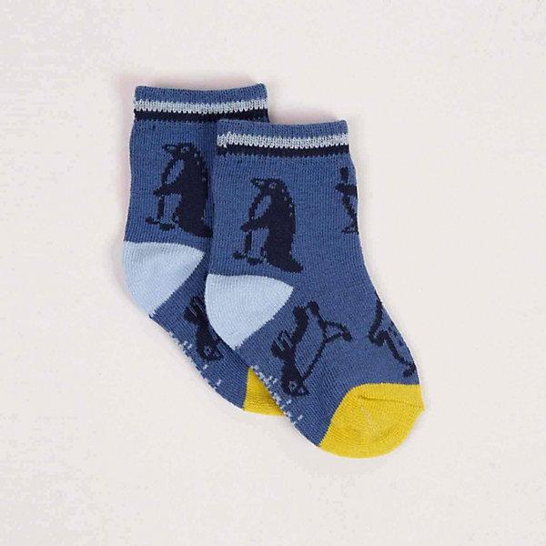 Catimini Носки Catimini для мальчика хлопок возраст purcotton summer infant star тонкие жаккардовые носки 11см синий светло голубые три пары полубеленой мешок
