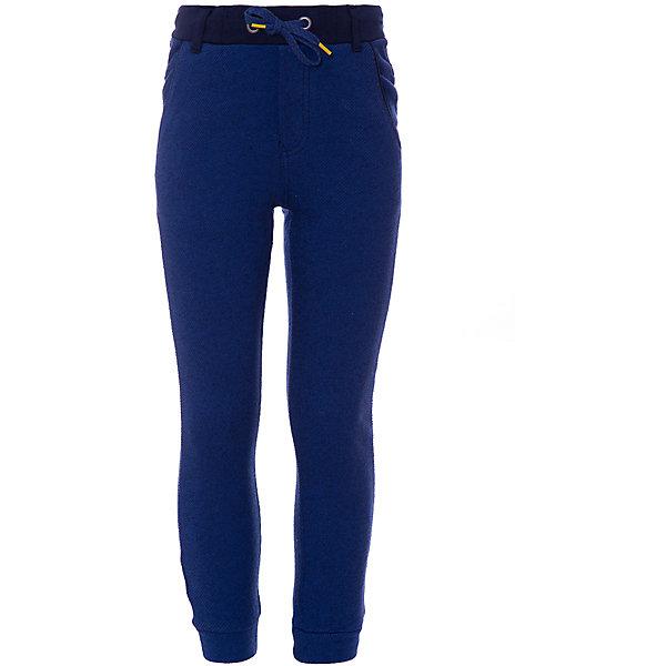 Купить Спортивные брюки Catimini для мальчика, Китай, темно-синий, 152, 116, 110, 98, 104, 140, 128, 164, 122, Мужской