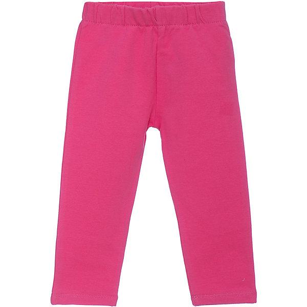 Z Брюки Z для девочки брюки джинсы и штанишки coccodrillo леггинсы для девочки mouse j17122602mou 009