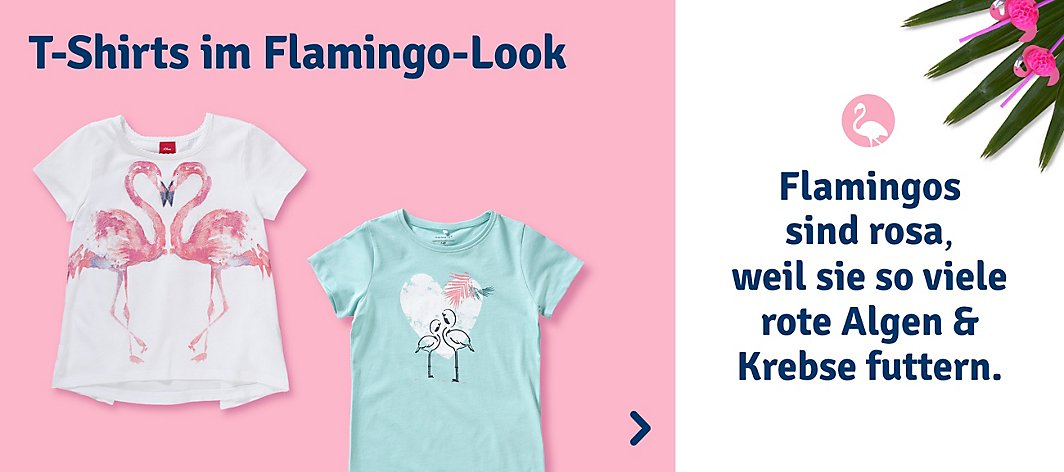 Flamingo Shirts