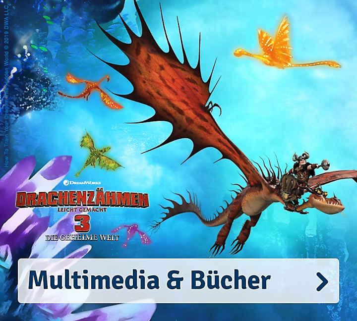 Dragons Drachenzahmen Leicht Gemacht Ohnezahn Fanartikel Mytoys